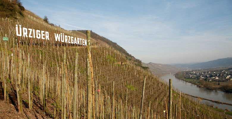 Weingut Markus Molitor ürziger würzgarten