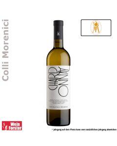 Cantina Colli Morenici Chardonnay