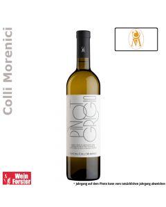 Cantina Morenici Pinot Grigio DOC