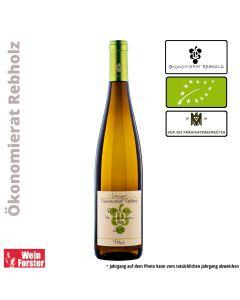 Weingut Ökonomierat Rebholz Riesling vom Buntsandstein