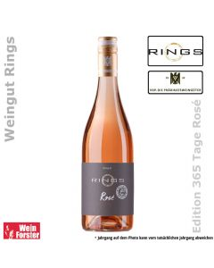 Rings 365 Tage Rose
