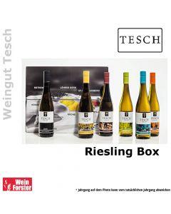 Weingut Tesch Riesling Box
