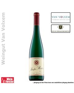 Weingut Van Volxem Schiefer Riesling trocken