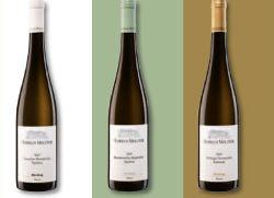 Weingut Markus Molitor Farbcode