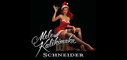 Weingut Schneider Ellerstadt