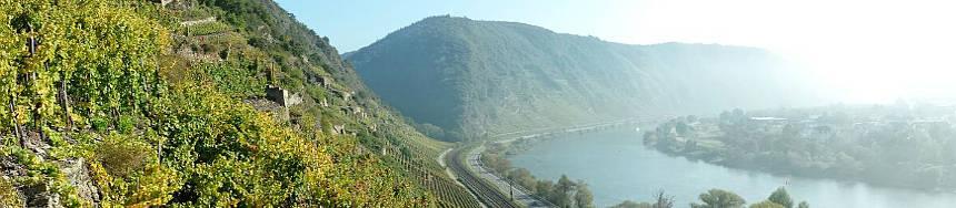 Materne und Schmitt Wein