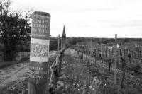 Weingut Reichsrat von Buhl Kirchenstück
