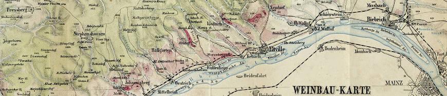 Weinbergslagen im Rheingau