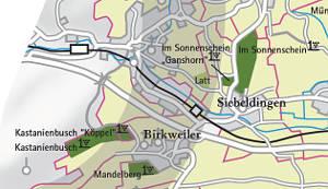 Birkweiler Kastanienbusch Große Gewächs Lage